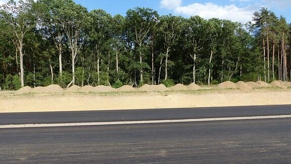 Neuer Straßenbelag auf Autobahn neben Sandhang und Wald