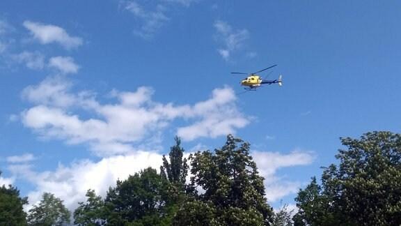 Helikopter fliegt bei blauem Himmel über Bäume