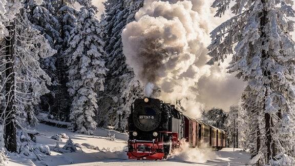 Auf dem Weg zum Brocken hatte ich die tolle Gelegenheit bei schönstem Winterwetter die Harzer Schmalspurbahn im Winterwald zu fotografieren.