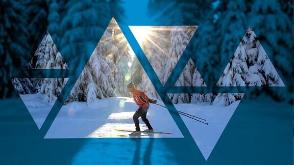 Ein Langläufer fährt durch den verschneiten Winterwald in Mühlleithen einem Ortsteil von Klingenthal im Vogtland.