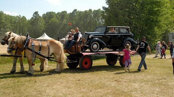 Kaltblüter mit Opel von 1934 auf der Landefläche