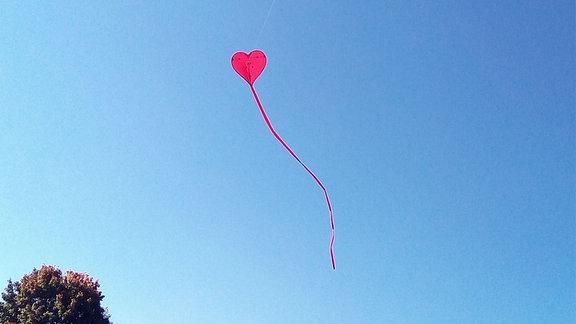 Ein herzförmiger Drachen schwebt über einer Wiese.