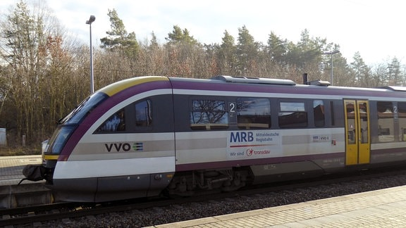 Ein Zug der Mitteldeutschen Regiobahn steht auf einem Gleis.