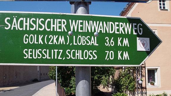Ein grüner Wegweiser für den Sächsischen Weinwanderweg steht an einem Gehweg, im Hintergrund Häuser