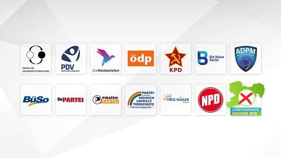 Übersicht über kleine Parteien, die zur Landtagswahl in Sachsen antreten