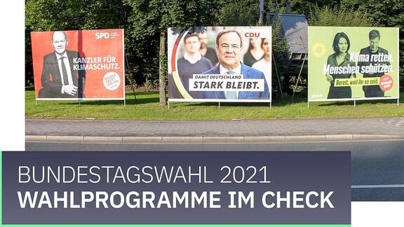 Teaserbild mit der Aufschrift Bundestagswahl 2021: Wahlprogramme im Check.
