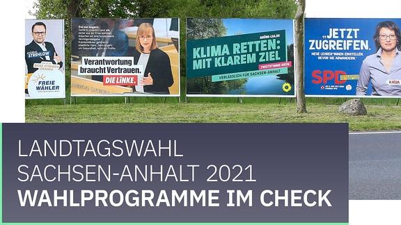 Teaserbild mit der Aufschrift Landtagswahl Sachsen-Anhalt 2021: Wahlprogramme im Check.
