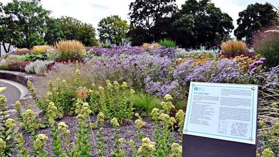 Pflanzen im egapark