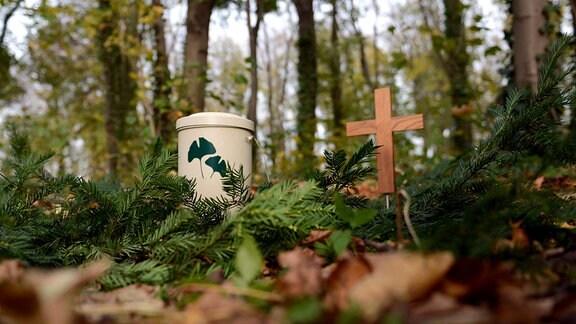 Urne und ein Holzkreuz stehen in einem Friedwald