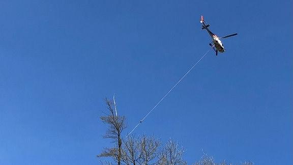 Hubschrauber hebt Baumstamm an Seil aus Wald