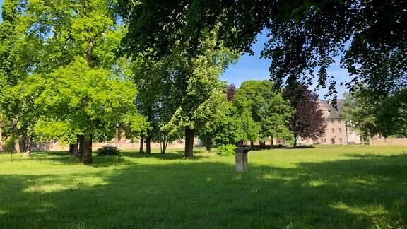 Park mit Bäumen am Schloss Kromsdorf