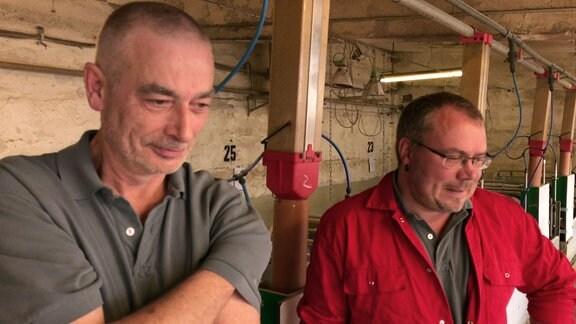 Zwei Bauern gucken in den Stall.