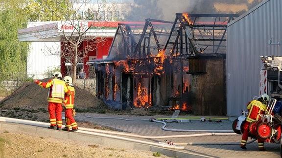Reptilienpark Erfurt in Flammen
