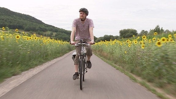 Ein Mann fährt Fahrrad auf einem Radweg zwischen Sonnenblumen