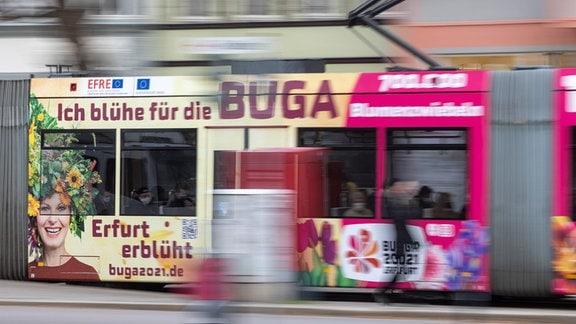 Buga-Werbung auf einer Straßenbahn in Erfurt.