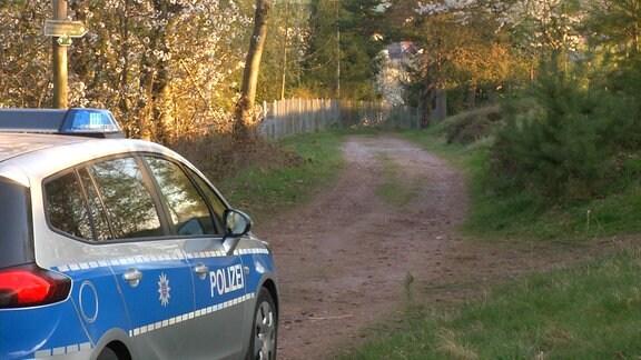 Ein Polizeiauto auf einem Waldweg