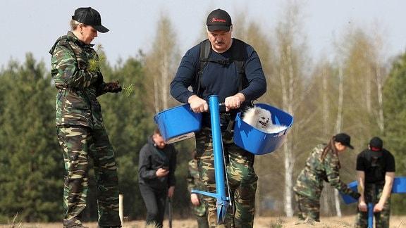 Alexander Lukaschenko pflanzt Pinien