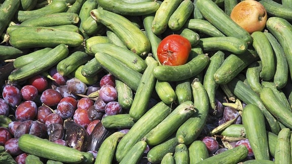 Weggeworfenes Gemüse und Obst