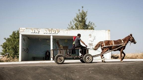 Pferdegespann auf der Straße
