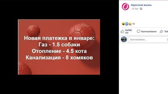 Ukrainisches Mem Hund für Wärme