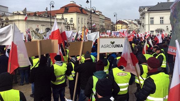 Demonstranten tragen Fahnen