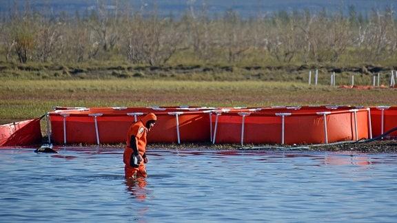 Ein Mann in einem orangefarbenen Neoprenanzug läuft am Ufer eines Sees