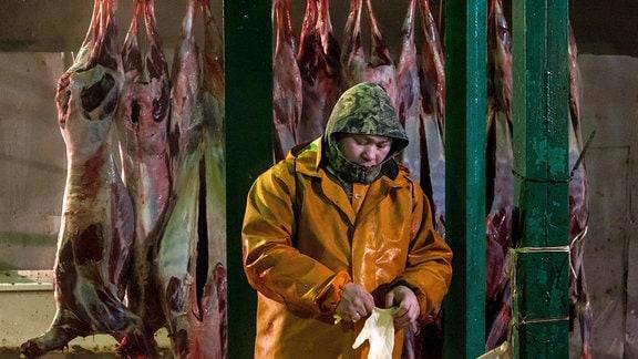 Hirschkadaver, die in einer Schlachtanlage der Charp-Rentierfarm im Dorf Krasnoje hängen.
