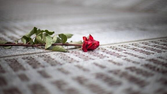 Blumen auf einer Gedenktafel