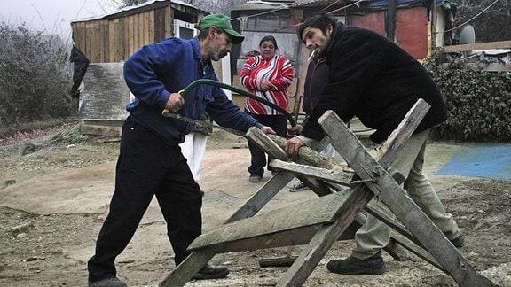 Das Roma-Slumviertel am Rande des Ortes. Mit dem Wegbrechen von Kleinhandwerk und einfachen Arbeitsplaetzen seit dem Systemwechsel 1989 ist die Arbeitslosigkeit unter Roma total. Illegal gesammeltes Holz für die Heizung.