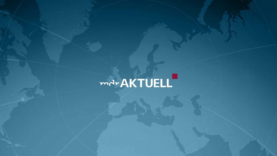 Umweltaktivistin Inga Zasowska - Die Greta Thunberg von Polen | MDR.DE