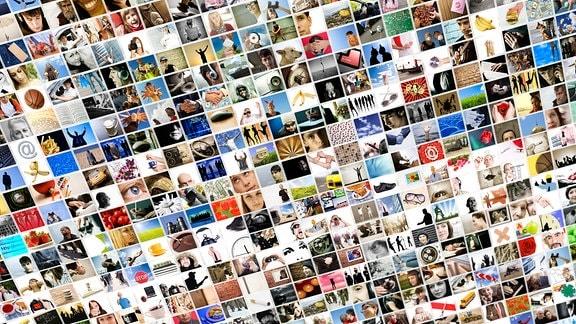 Zahllose Fotos auf einem Bildschirm