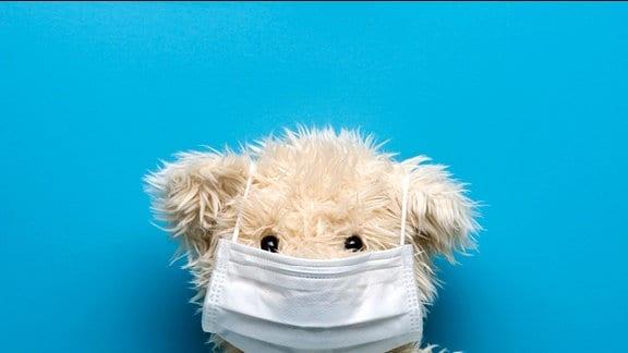 Teddybär trägt Grippe-Maske.