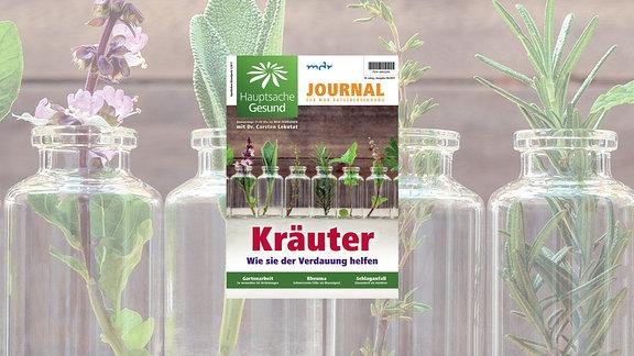 Hauptsache Gesund Journal 07: Kräuter - wie sie der Verdauung helfen. Juni 2021