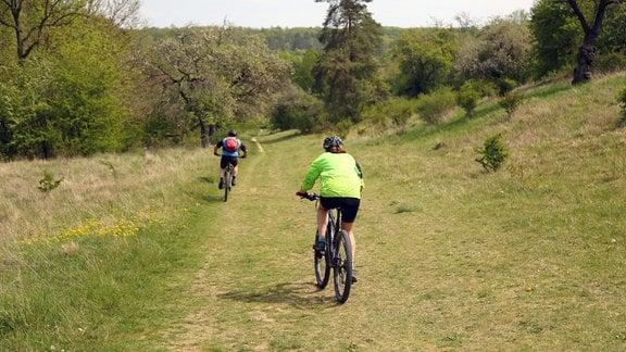 Radfahrer auf dem Lutherweg