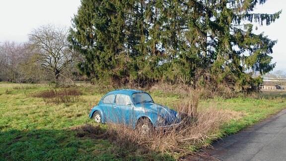 Ein blaues, altes Auto steht auf einer Wiese.