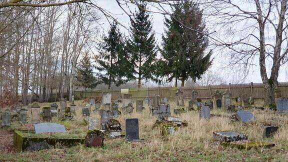 Der Jüdische Friedhof von Marisfeld