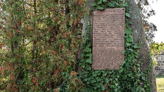 Gedenkstein für den 1938 zerstörten Jüdischen Friedhof von Ballenstedt