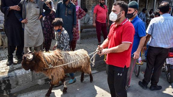 Mann mit seinem Opfertier