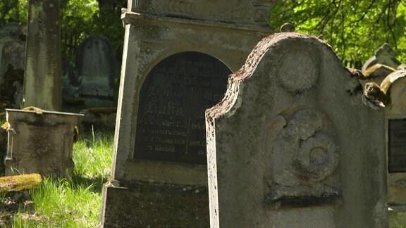 Spuren jüdischen Lebens in Gleicherwiesen in Thüringen