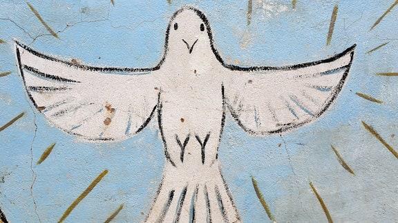 Die Taube, Symbol für den heiligen Geist