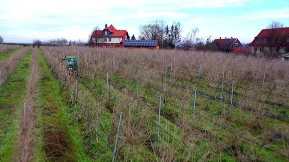 Ein kleines landwirtschaftliches Gerät auf einer Anbaufläche