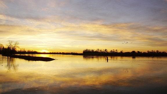 Sonnenaufgang an der Elbe bei Dornburg
