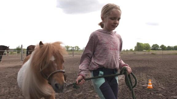 Ein Mädchen führt ein Pony.