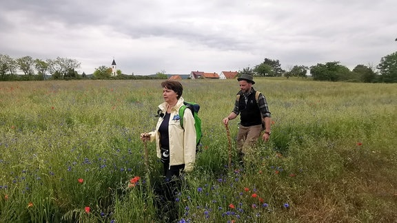 zwei Menschen gehen durch ein Kornblumenfeld