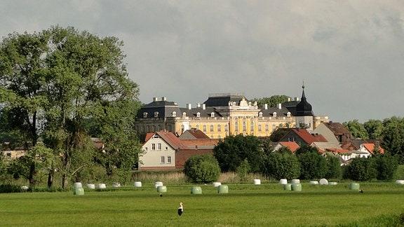Blick über die Wiesen hinweg auf das Dorf Dornburg mit Barockschloss und Schlosskirche.