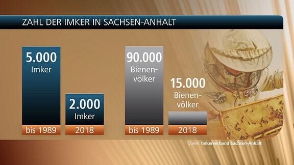 Eine Grafik zeigt die Zahl der Imker in Sachsen-Anhalt