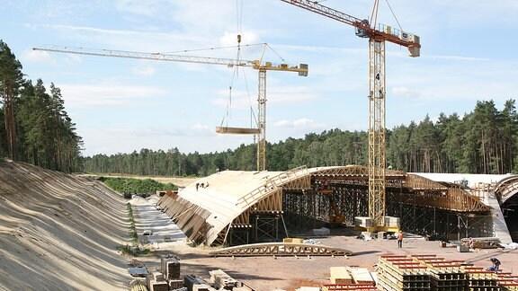 Bau einer Grünbrücke zwischen Dolle und Lüderitz