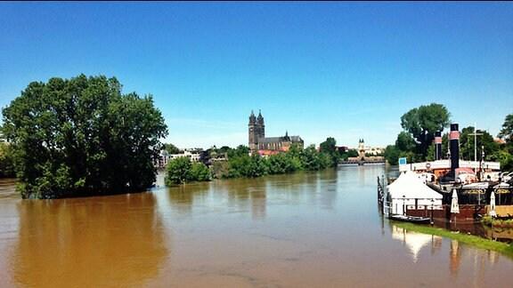 Die Elbe in Magdeburg während des Hochwassers 2013
