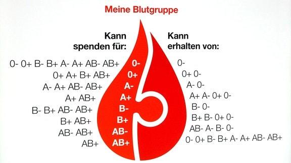 Informationstafel für Blutspender.