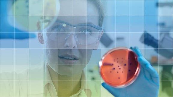 Chemikerin im Labor